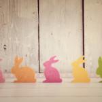 Sur les traces du lapin de Pâques