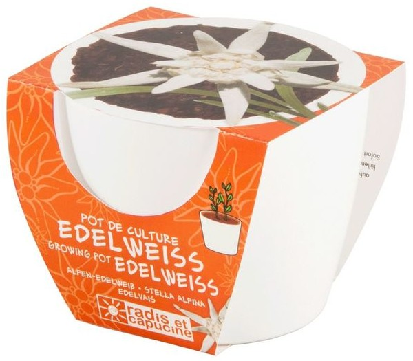 mini-kit-edelweiss